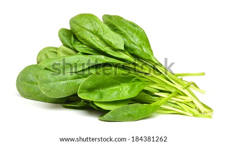 Bunch of spinach leaves on isolated white background ...