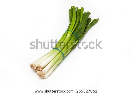 bunch of spring onions isolated on a white studio background. - stock photo