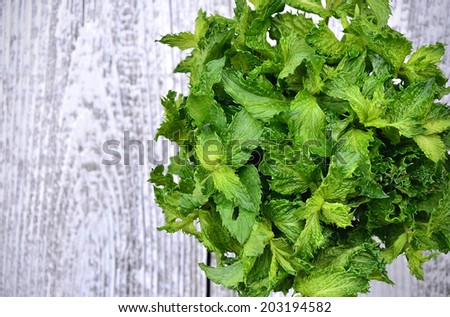 Bunch of the mint on wooden table.Copy space background.