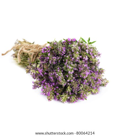 Bunch of thyme herb isolated on white - stock photo
