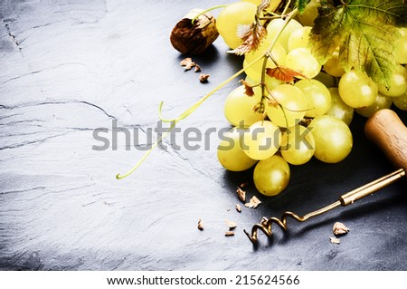 Bunch of white grape with grapevine. Wine making concept - stock photo