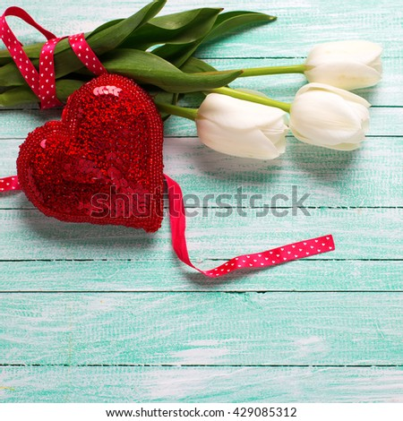 Bunch of white tulips flowers and decorative red heart on turquoise wooden background. Selective focus. Place for text. Square image. - stock photo