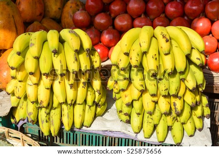 Bunches of bananas at the market in Mapusa