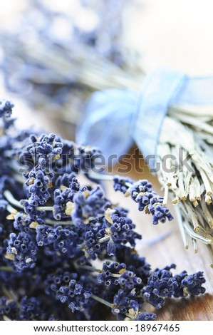 Bunches of dried lavender herb close up - stock photo