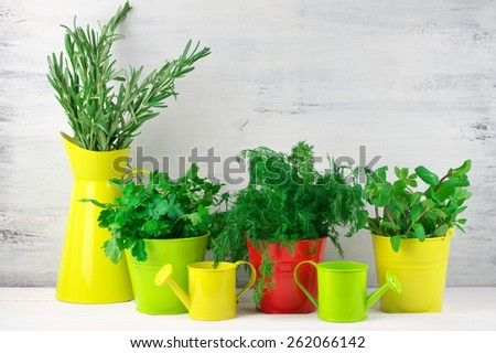Bunches of flavoring greens in colorful metallic buckets and watering cans on rustic wooden background. - stock photo