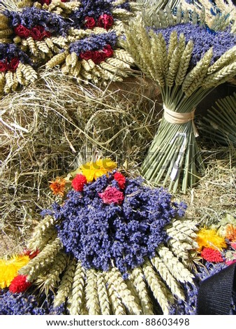Bunches of lavenders, street market in Sales-sur-Verdon, Provence, France