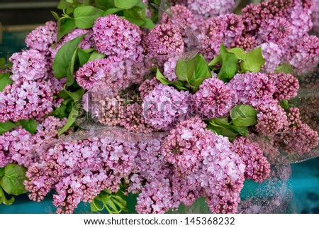 Bunches of lilac flowers on the street market