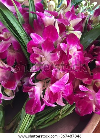 Bunches of Orchid Flowers for Worship the Monk in Thai Style - stock photo