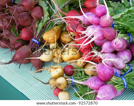 Bunches of radishes and beets at farmers' market - stock photo