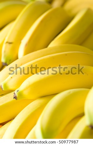 Bunches of ripe bananas in grocery shop - stock photo