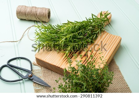 Bunches of rosemary and thyme with old-fashioned scissors. Wood table background. - stock photo