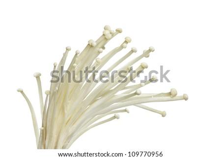 Bundle of enoki mushroom isolated on white - stock photo
