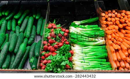 Bundle of fresh cucumber, radish, green onions and carrots in a supermarket at Colfax, Whitman County, Washington, USA. Color full and healthy concept. Panoramic style.