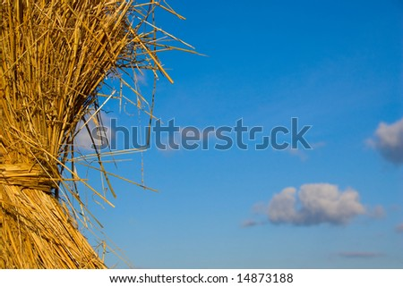 Bundle of hay with a blue sky - stock photo