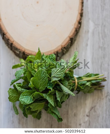 Bundle of Mint Leaves