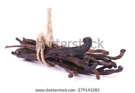 Bundle vanilla pods - stock photo