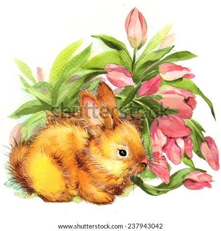 bunny and flower. watercolor - stock photo