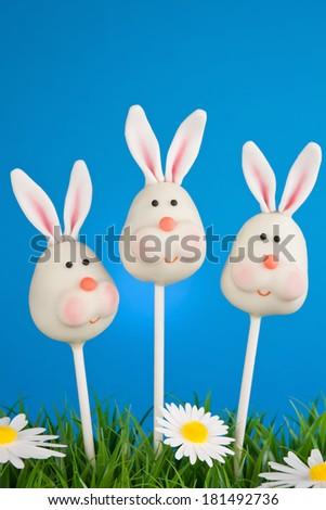 Bunny cake pops - stock photo