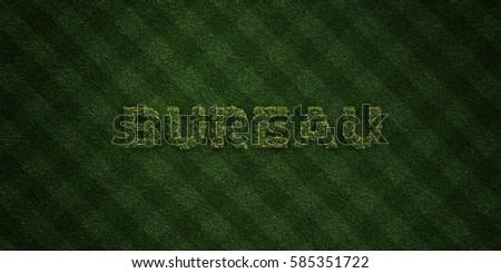 Karma Fresh Grass Letters Flowers Dandelions Stock Illustration