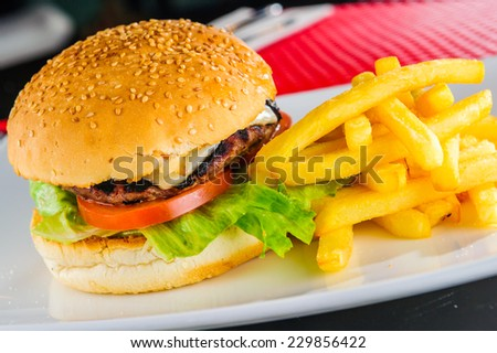 Burger and fries on plate. - stock photo