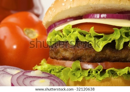 burger with tomato, onions, ketchup