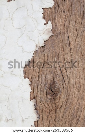 burn paper on grunge wood with space - stock photo