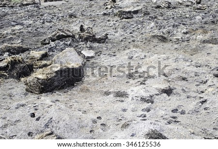 Burned field with ash and debris, disaster