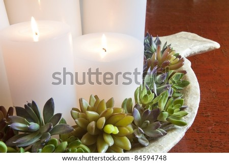 Burning candles arranged on a decorative plate - stock photo
