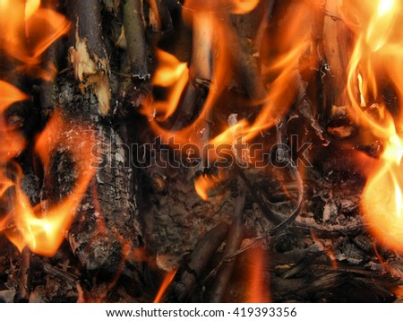 Burning coal fire with red and white ash close-up