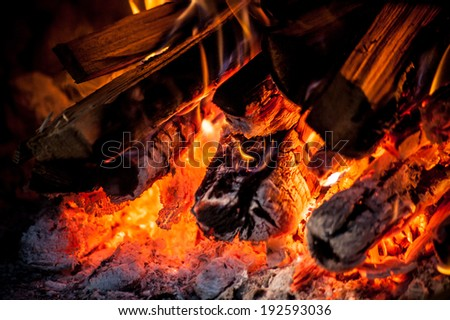 Burning firewood in red camp fire close up  - stock photo