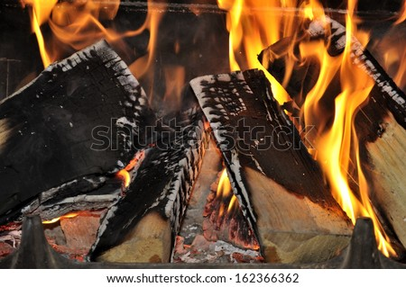 burning firewood in the fireplace - stock photo