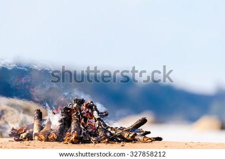Burning firewood on the seashore - stock photo