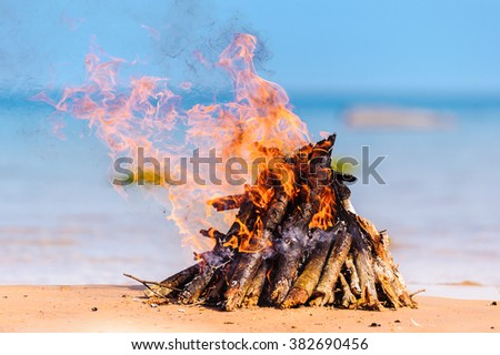 Burning firewood on the seashore - stock photo