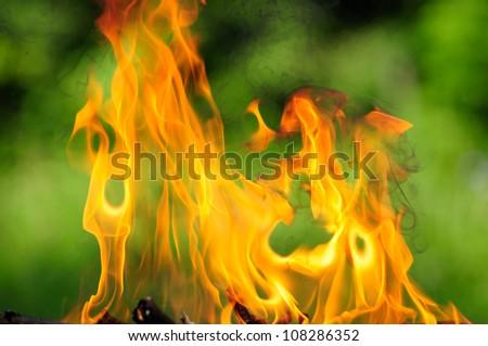 Burning Flames - stock photo