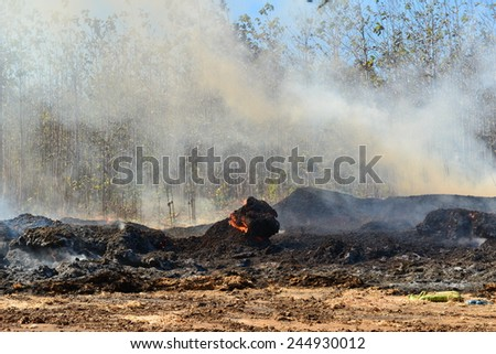 burning garbage and wood