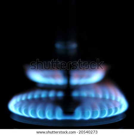 Burning gas of a kitchen range - stock photo