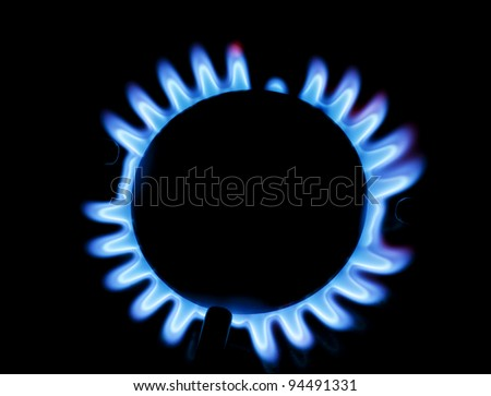 Burning gas on the kitchen gas stove - stock photo