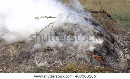 Burning grass foliage heap with heavy dense smoke. Pollution fume contamination garbage environment concept. - stock photo