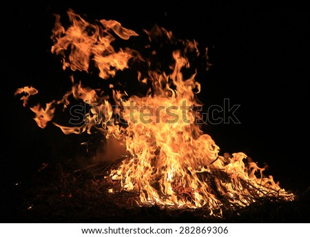 burning grass on a black background - stock photo