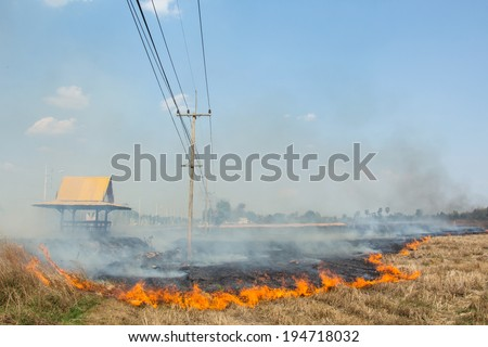 Burning of rice stubble burning straw in rice farmers in Thailand.