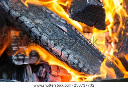 burning wood in fireplace