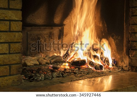 burning wood in the fireplace - stock photo