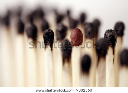 burnt matches with an intact - stock photo
