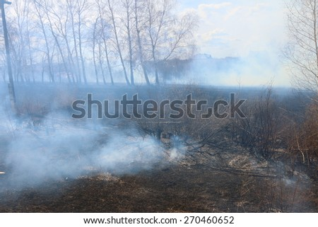 Burnt meadow grass at the village in smoke - stock photo