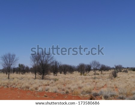 Burnt trees along the Namatjira drive in the West Mcdonnell ranges in the Northern Territory in Australia  - stock photo