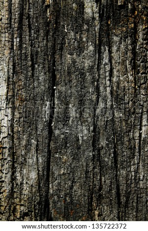 Burnt wood texture.Wood scorched by fire.