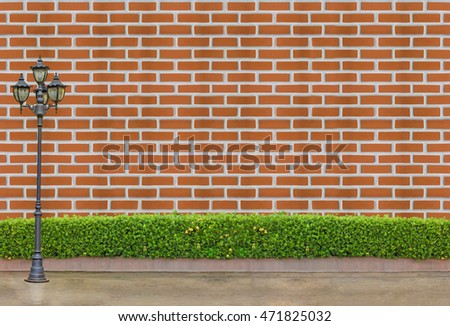 bush fence and concrete wall : street electric lamp post at green bush fence and white concrete brick wall and brown concrete background