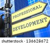 Business Concept. Professional Development Sign on Blue Background. - stock photo