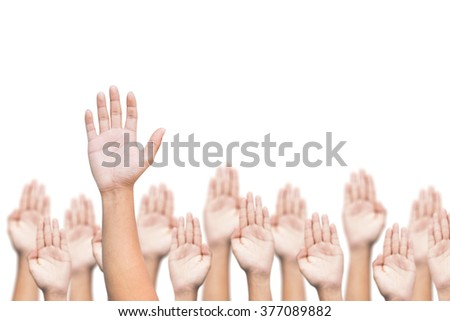 business crowd raising hands, many hands raise high up on white background - stock photo