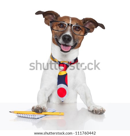 business dog typewriter tie glasses - stock photo